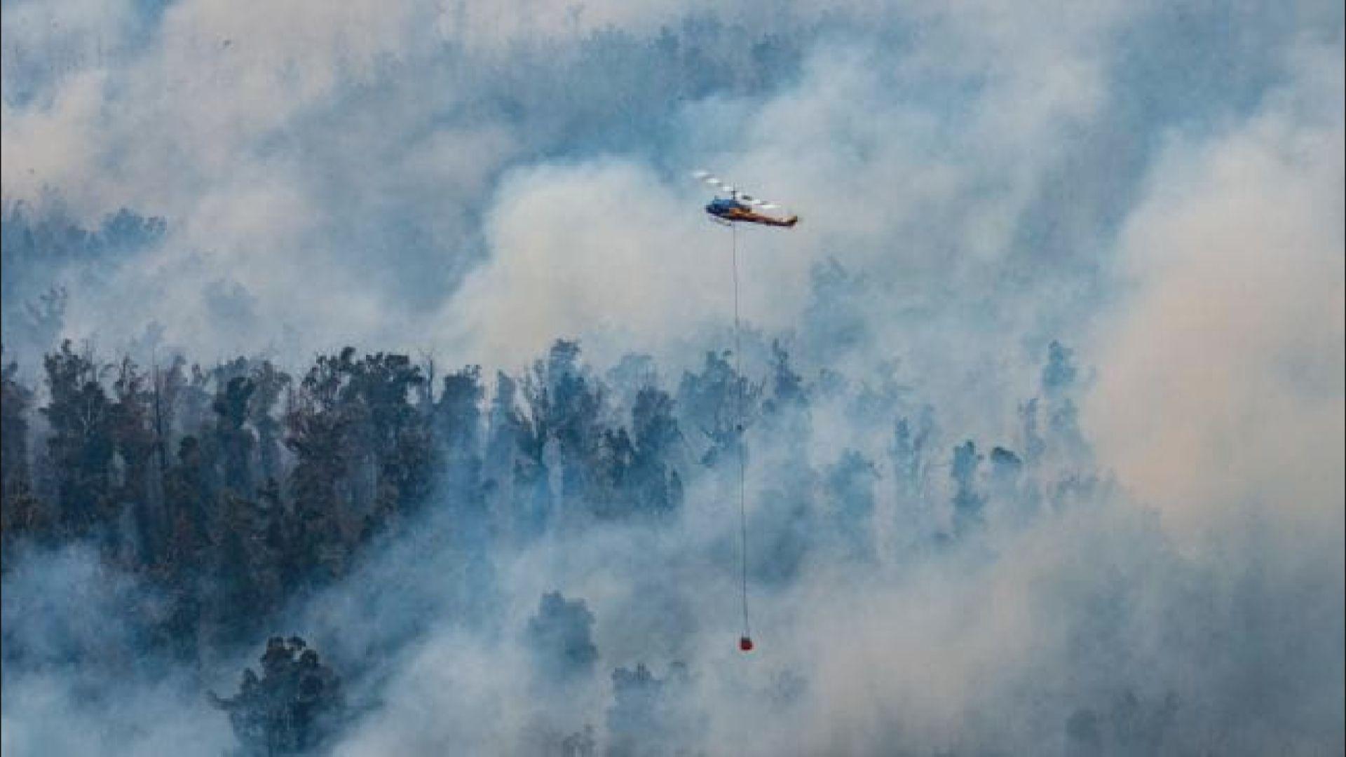 澳洲山火持續 新南威爾士再發緊急狀態