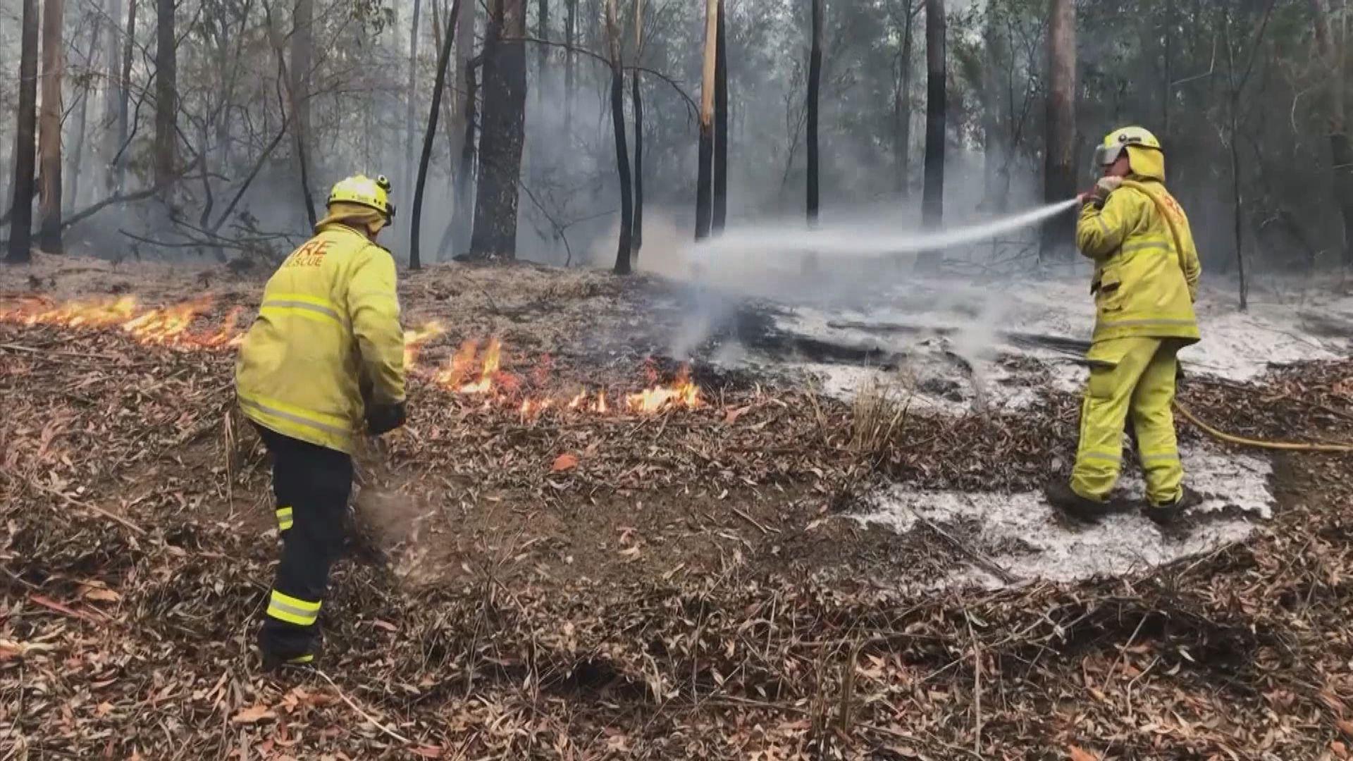 澳洲山火持續逾百火頭仍在焚燒