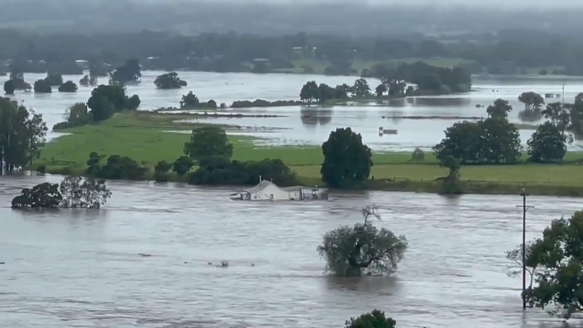 澳洲新南威爾士州暴雨持續 多地民眾撤離