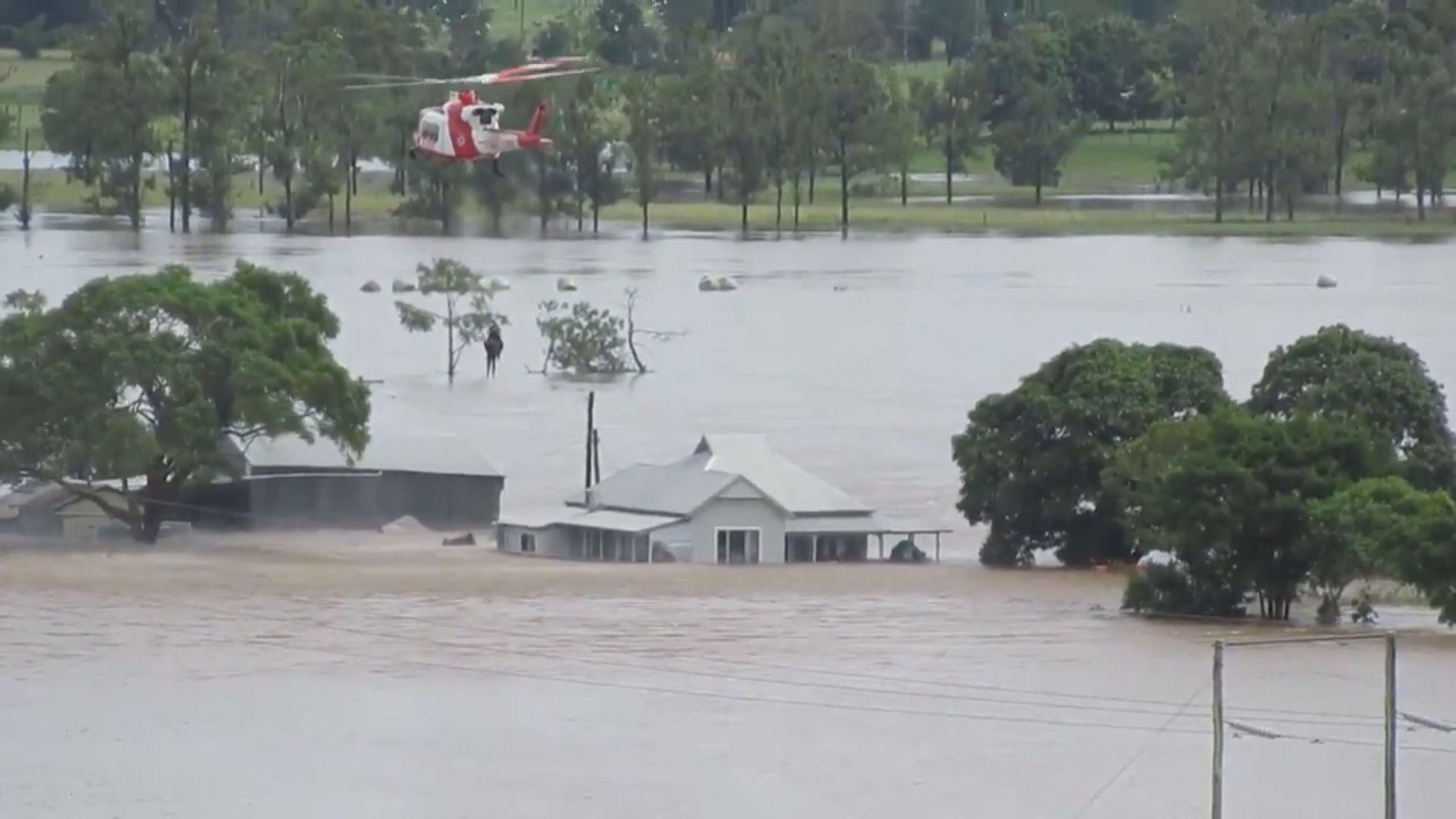 澳洲新南威爾士州暴雨持續 料過百間房屋被破壞
