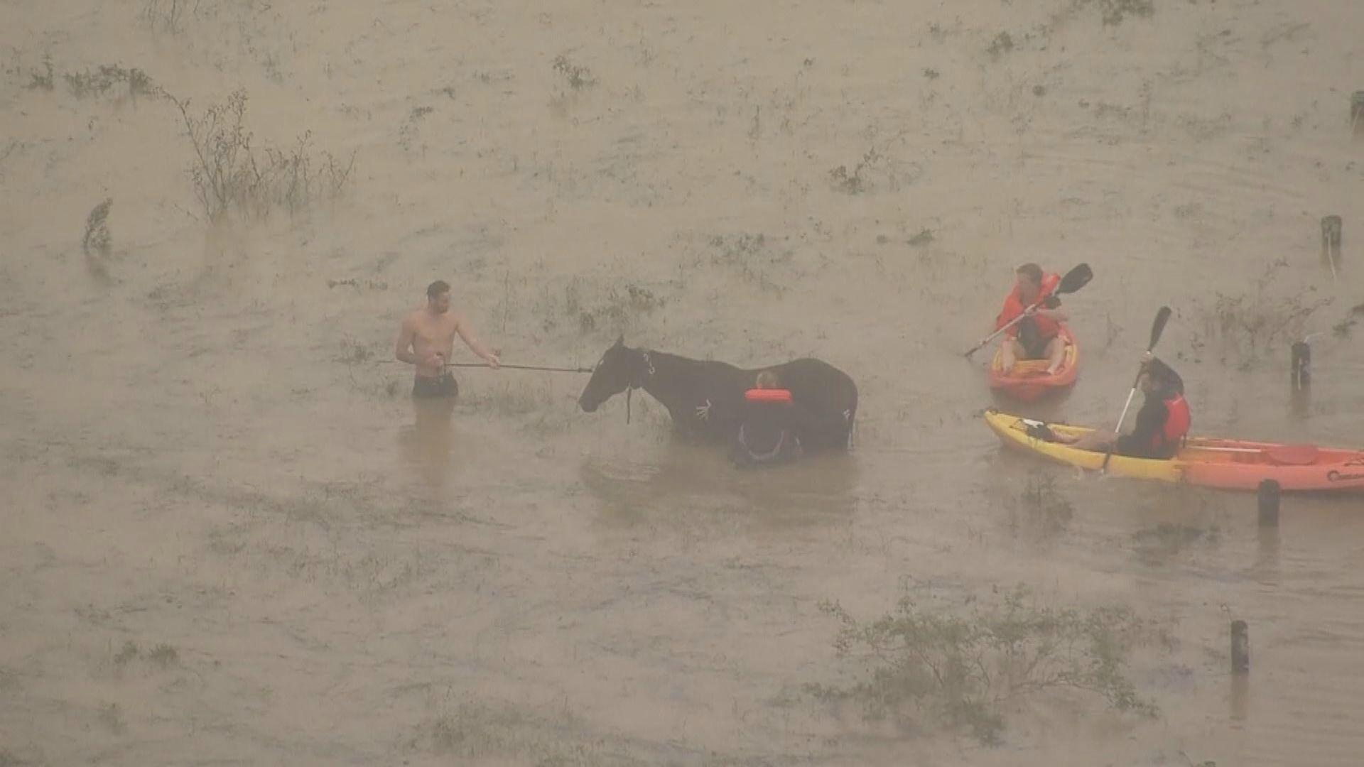 澳洲新南威爾士州水災 逾1.8萬人要撤離