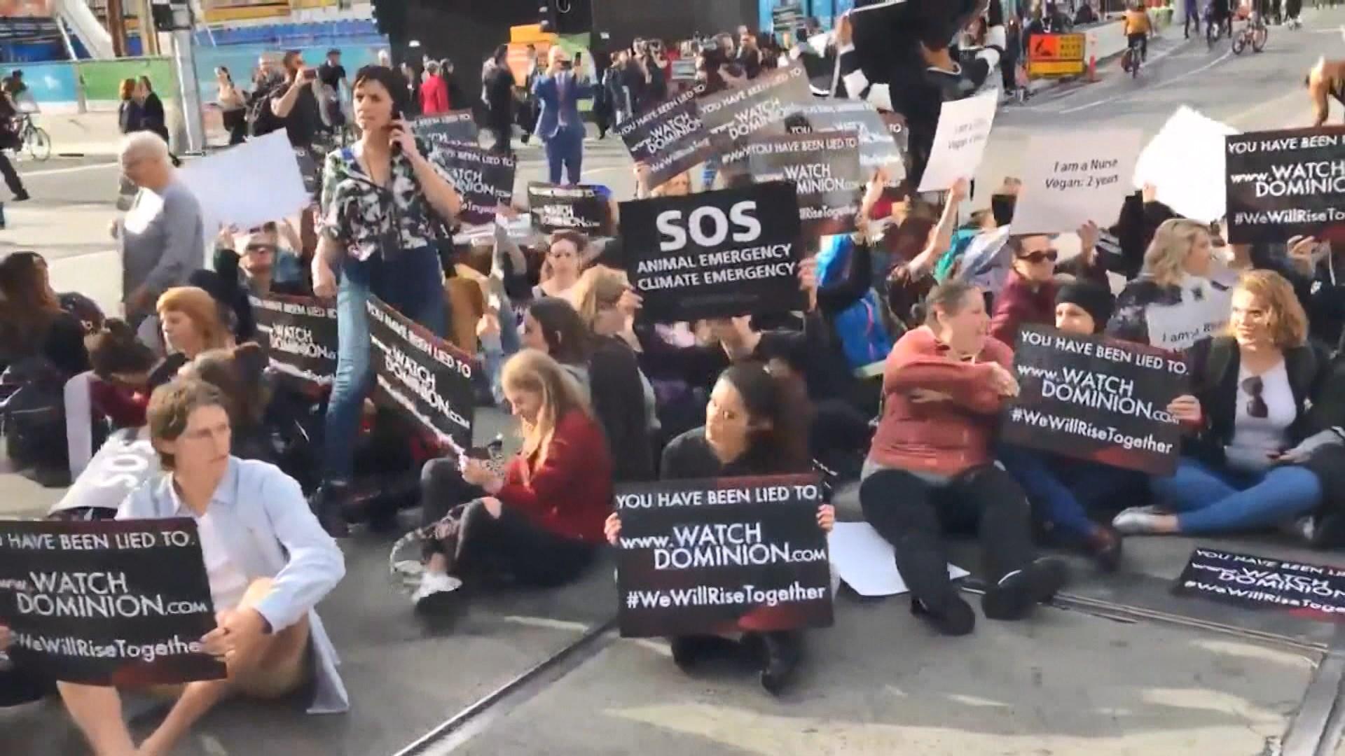 澳洲純素主義者闖屠場抗議屠宰動物