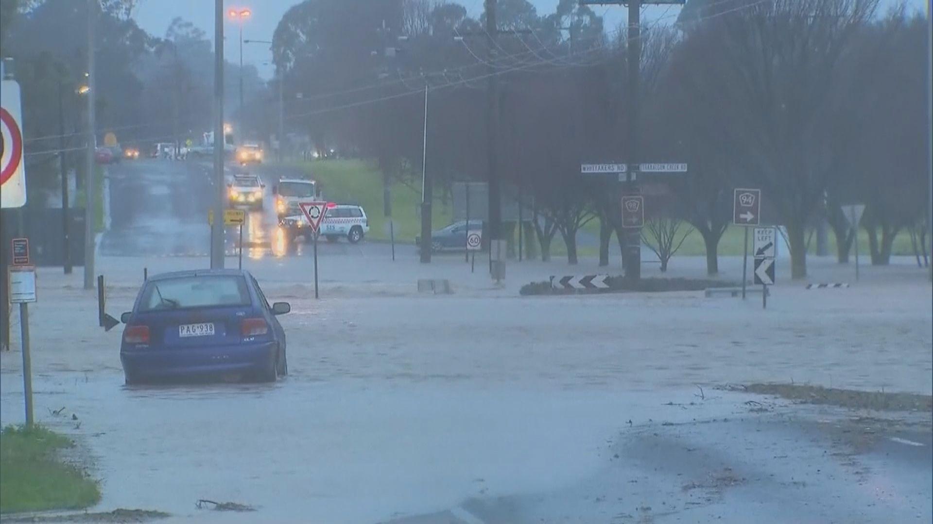 澳洲東南部受惡劣天氣侵襲