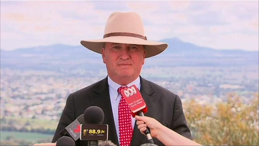 澳副總理擁雙重國籍喪失議員資格