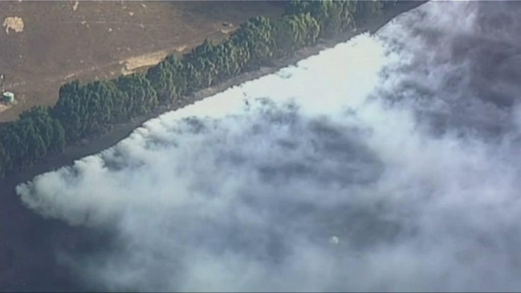 澳洲東南部山火逾百棟建築物損毀