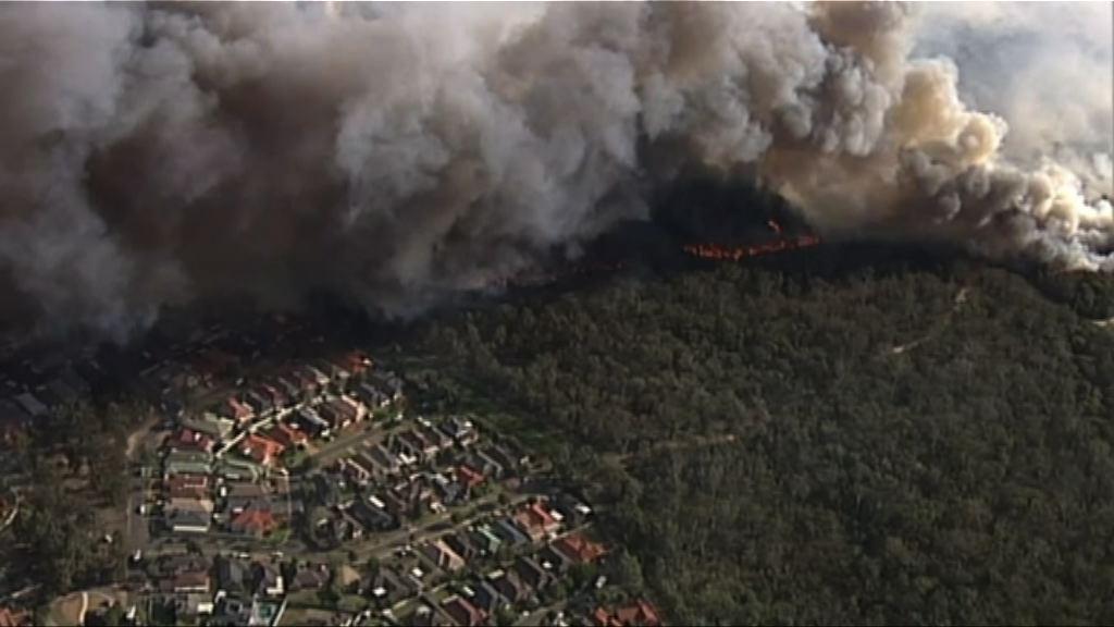 悉尼西南部山火威脅軍營和民居