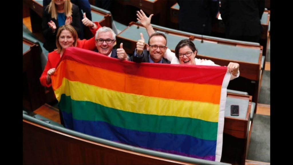 澳洲國會通過同性婚姻合法化