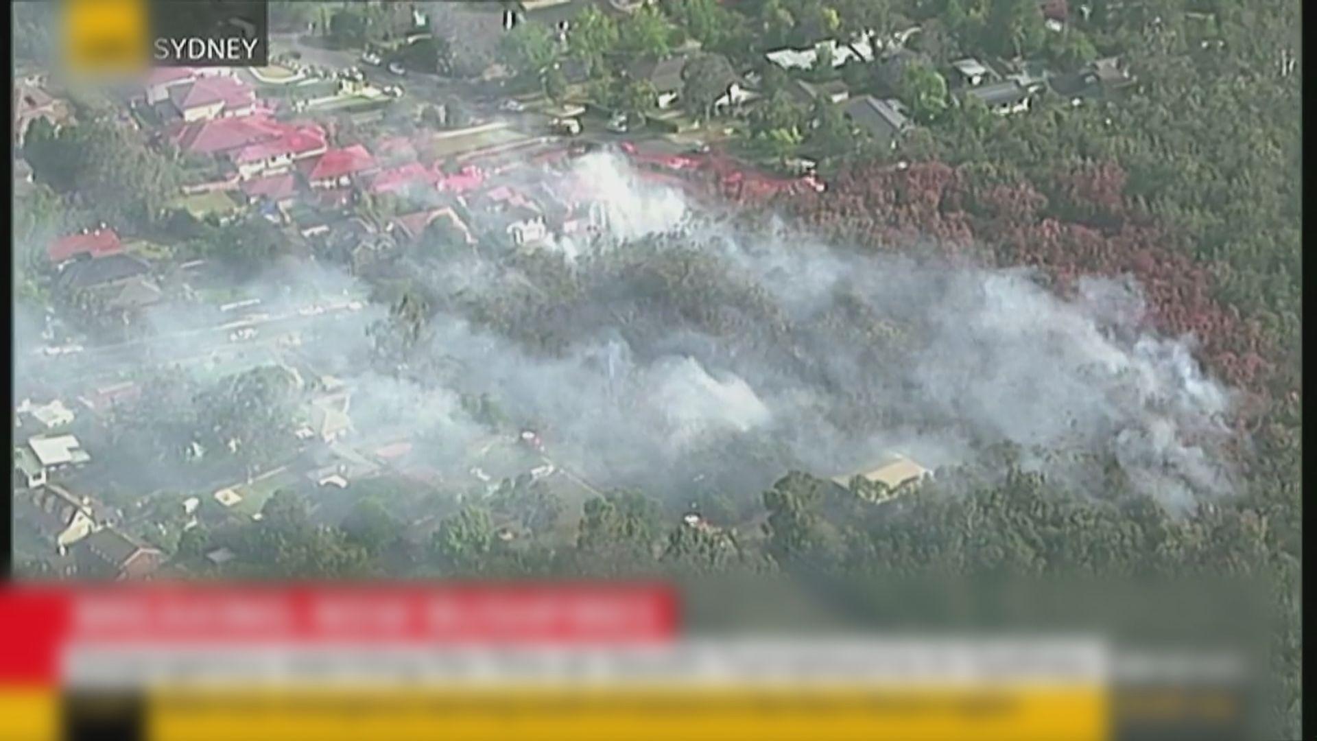 澳洲山火蔓延 部分災區居民來不及疏散