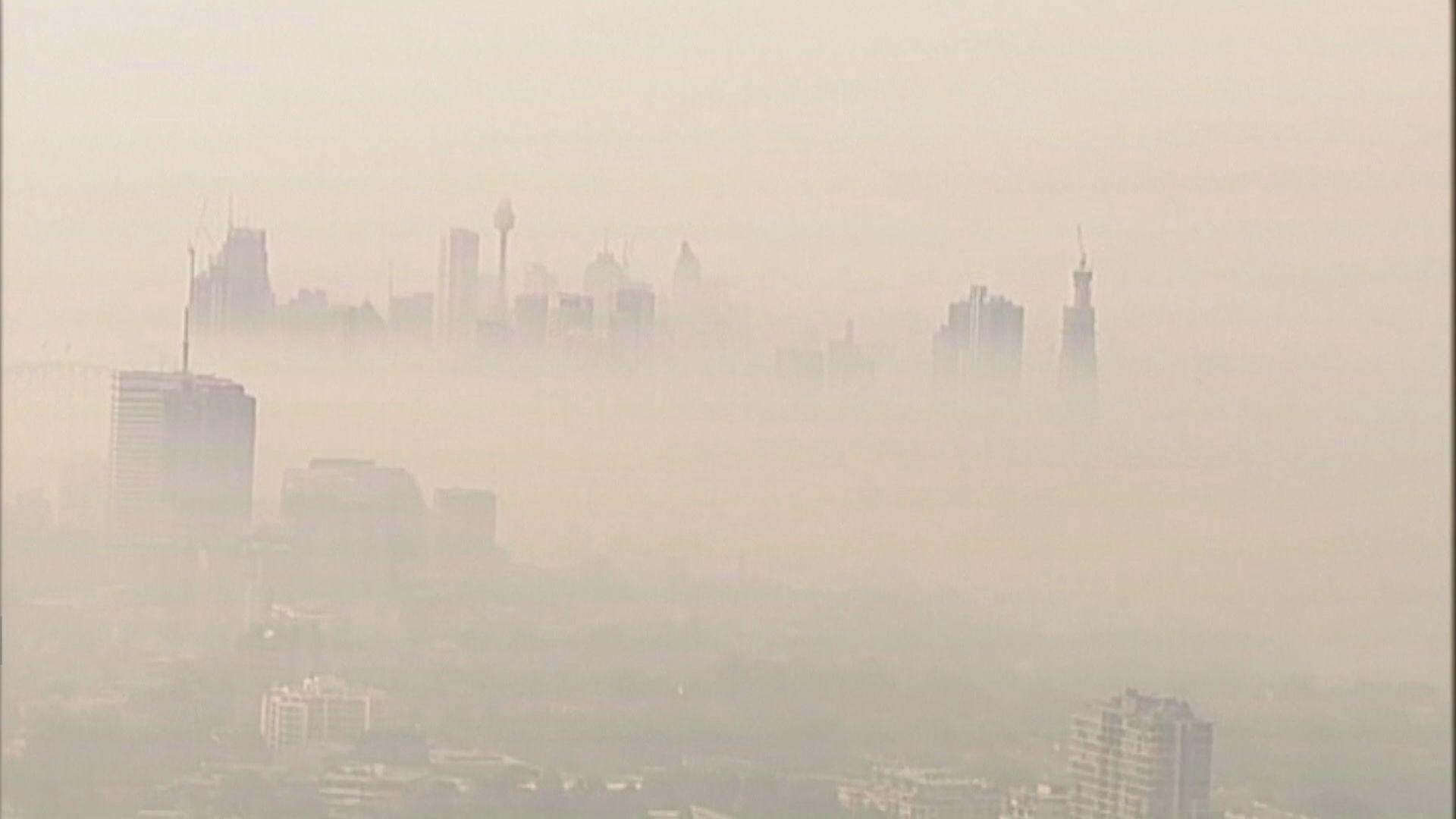 悉尼被山火煙霧籠罩 空氣質素惡劣