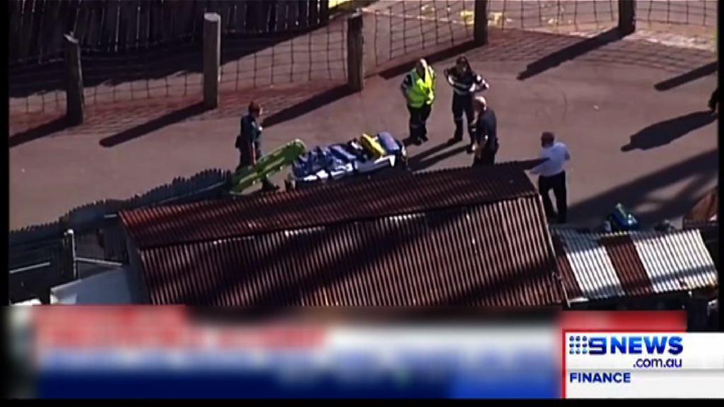 澳洲夢幻世界機動遊戲意外釀四死