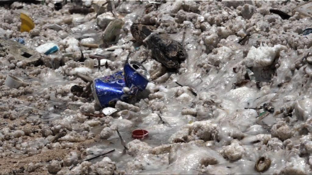 本港水域遭棕櫚硬脂污染 多個泳灘暫時關閉
