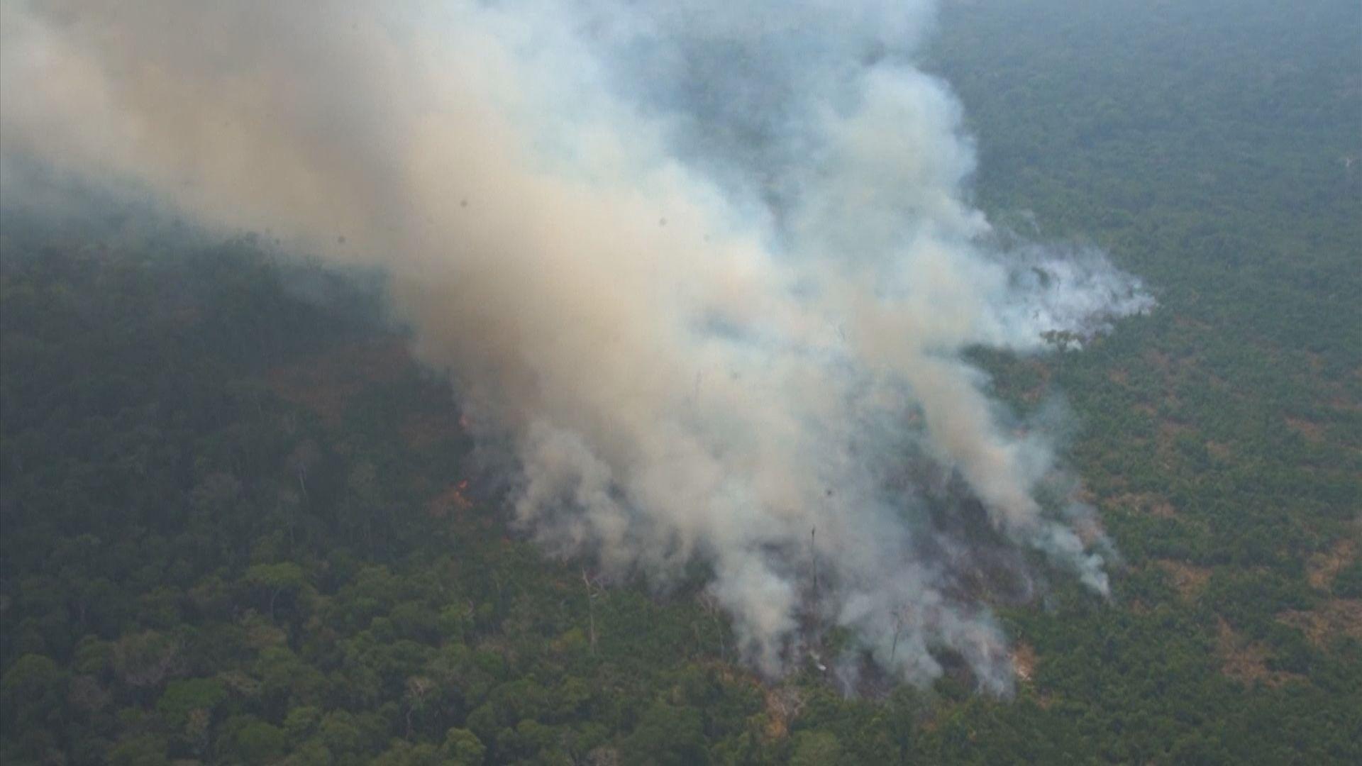 巴西總統博索納羅︰整體雨林無受大火影響