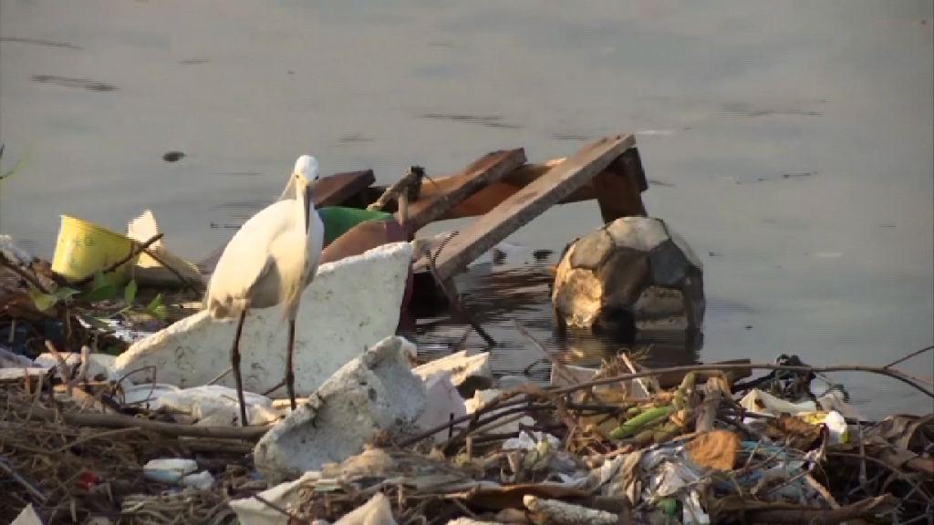 巴西示威抗議奧運場地水污仍嚴重
