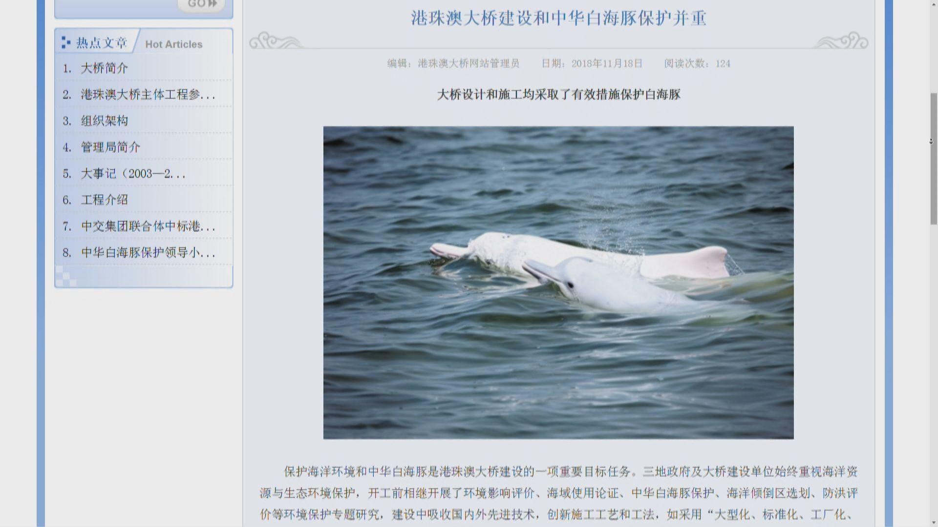 大橋管理局公布中華白海豚13年來少近兩成