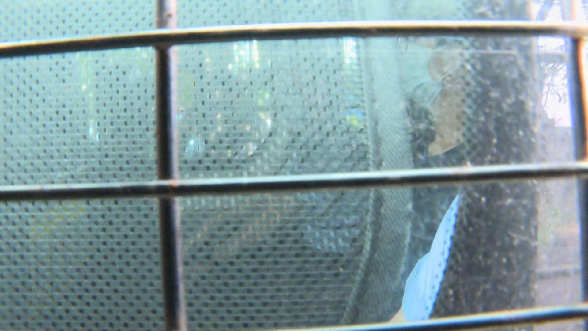 鍾翰林被控分裂國家罪 早上提堂
