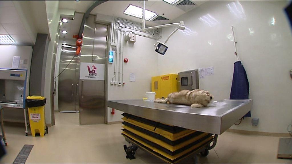 城大動物醫療檢驗中心周一啟用