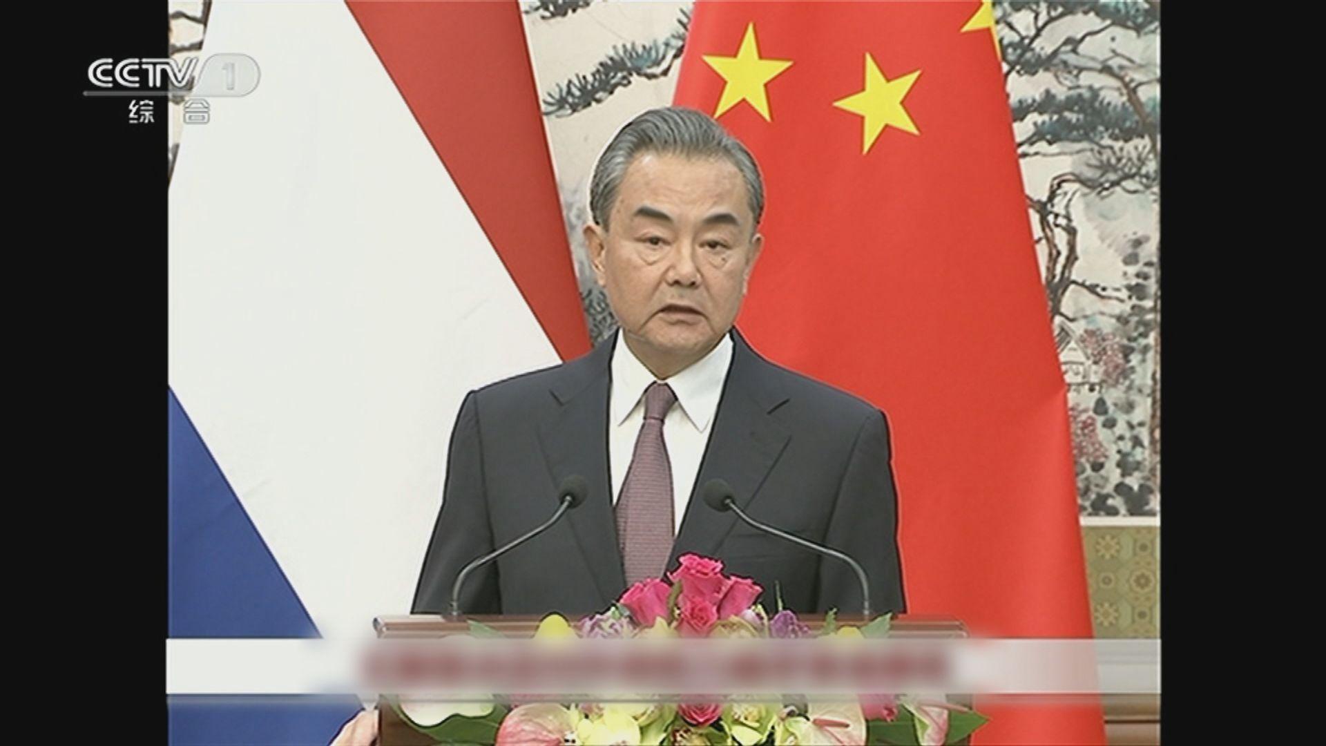 王毅:支持、尊重及諒解港府暫緩修例