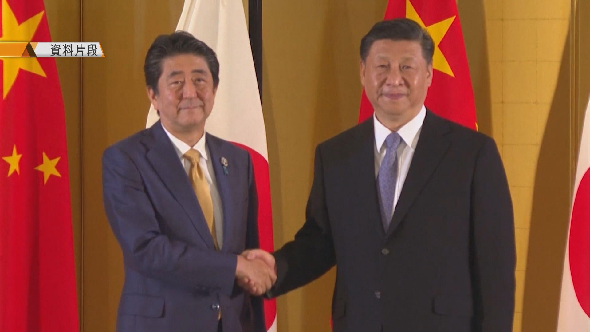 王岐山稱習近平訪日對兩國關係意義重大