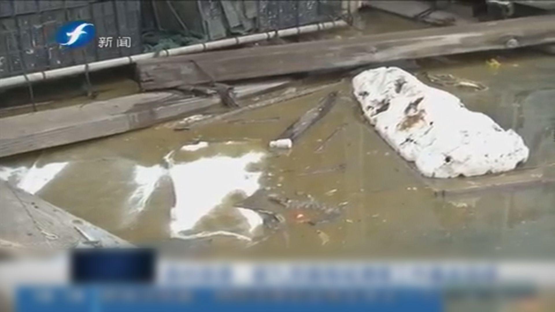福建泉州洩漏近7噸有毒物質碳九