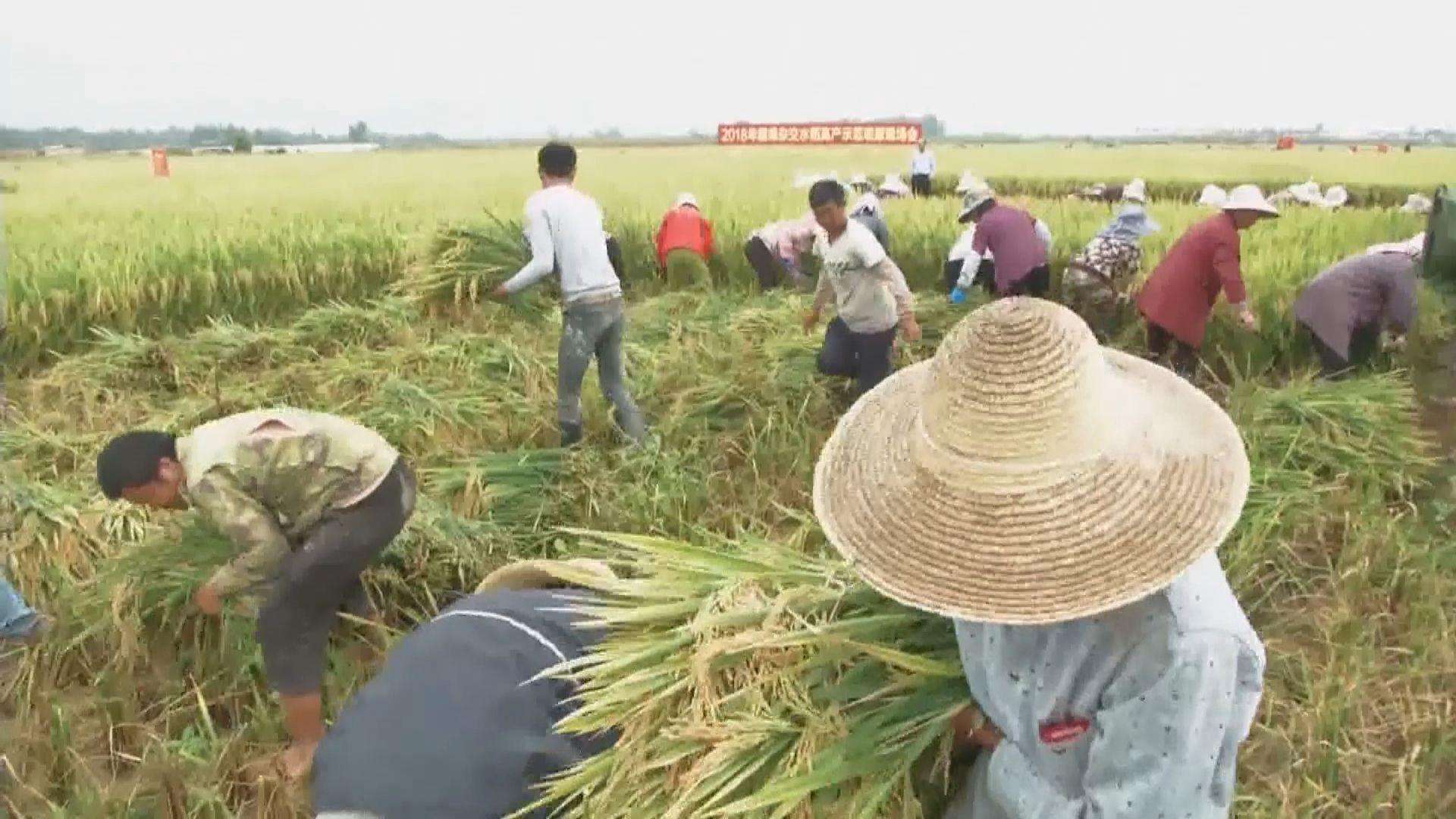 國務院白皮書:貧困農村居民人均收入年均增11.6%