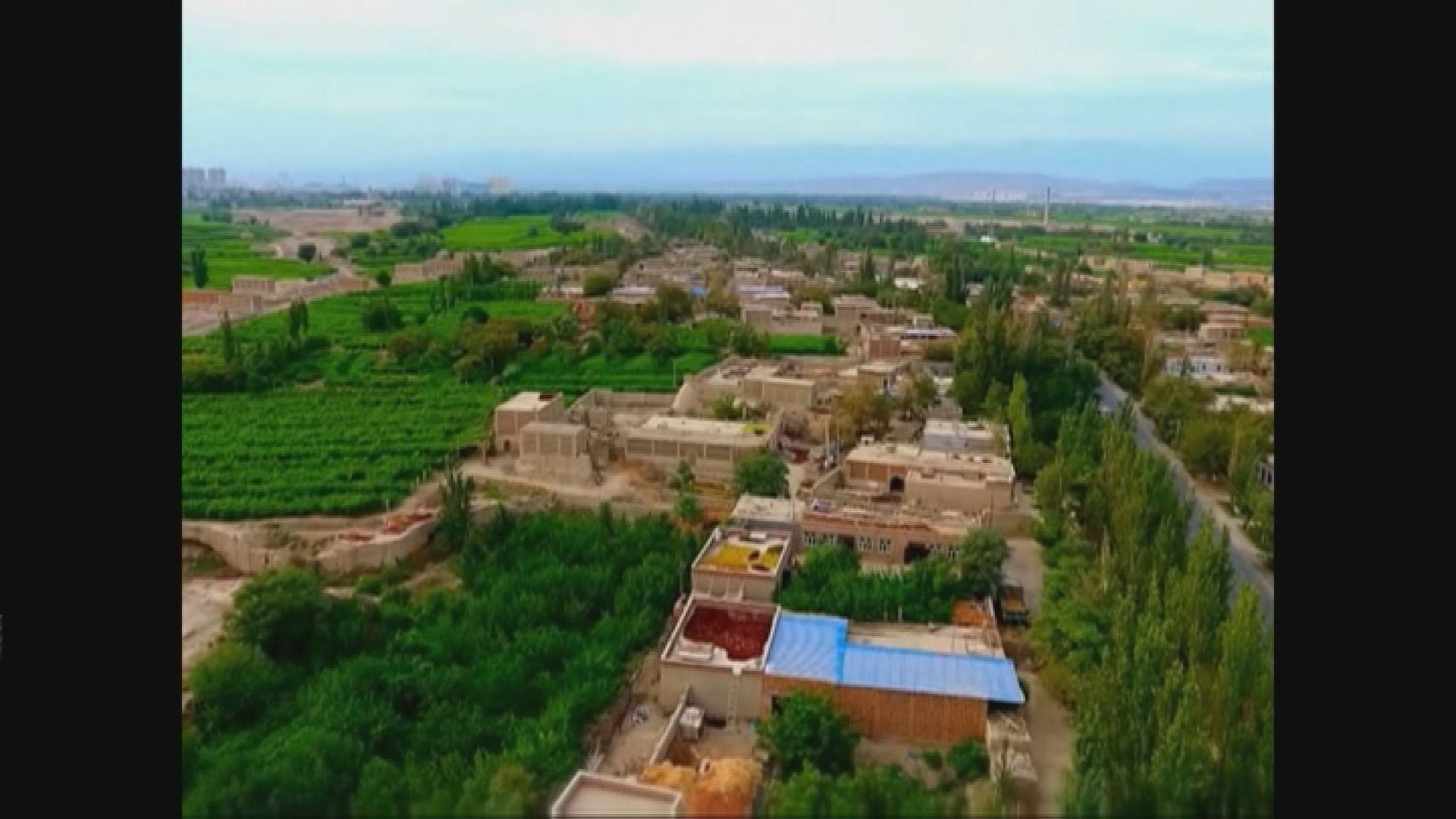 胡聯合:新疆的特別行動是要打擊恐怖罪行
