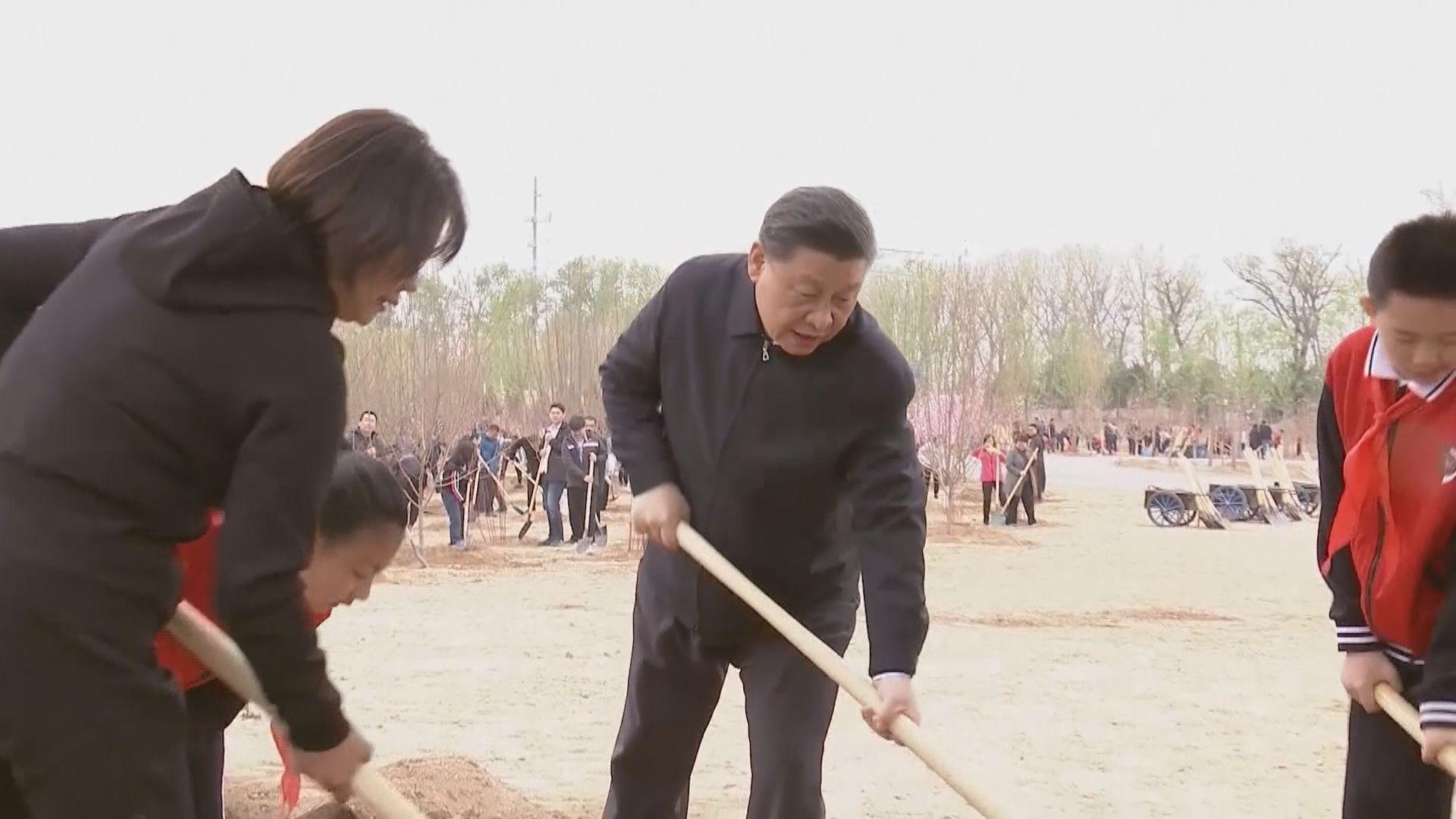 習近平在北京參加義務植樹活動