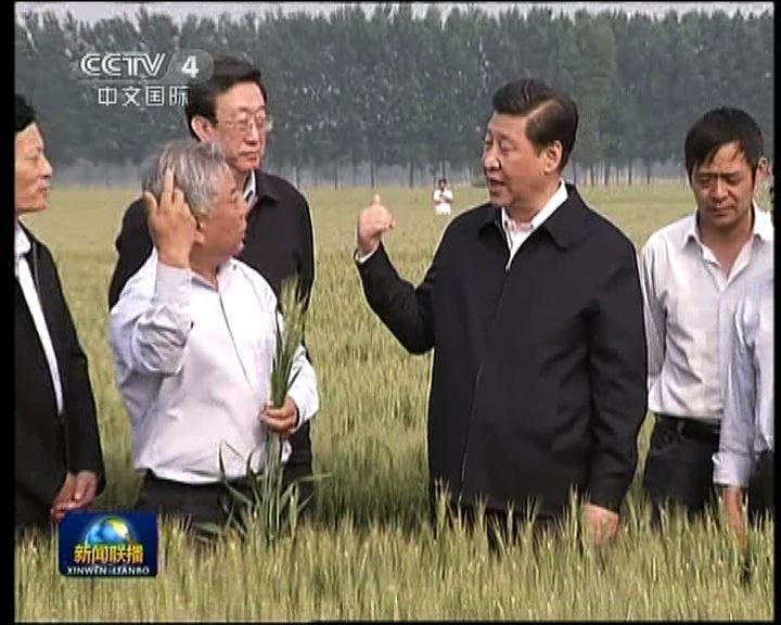 習近平視察河南省農村及企業