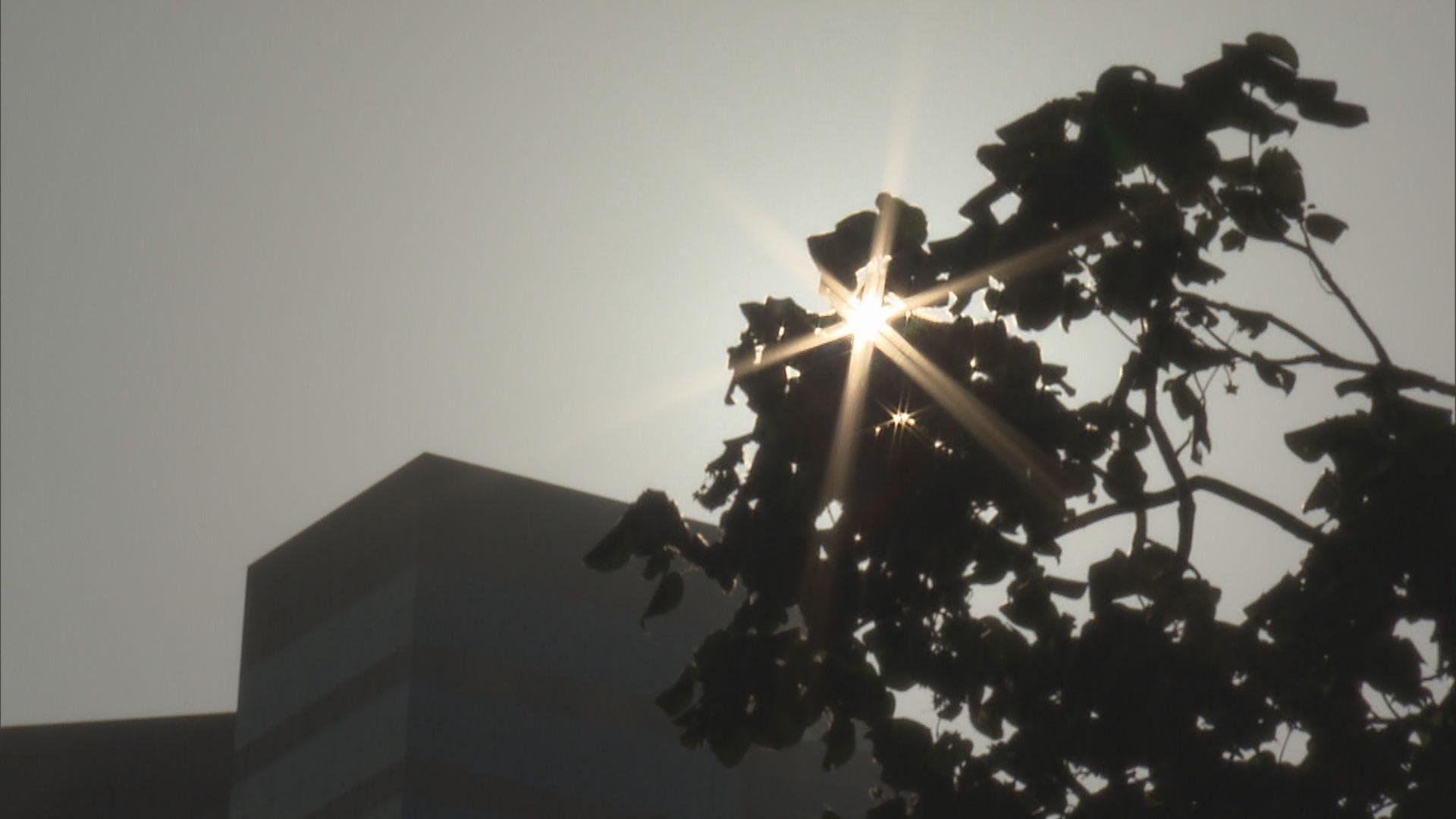天文台料未來數天天氣轉涼