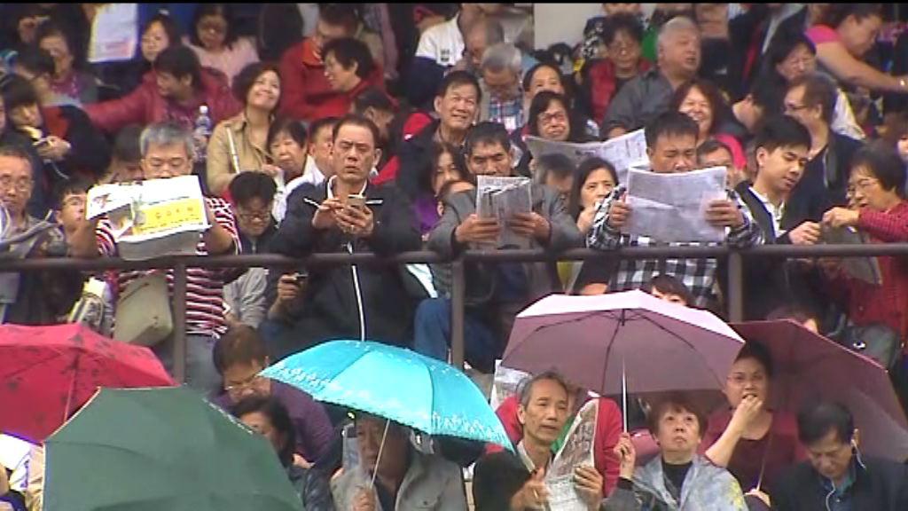 大批市民入場觀看年初三賀歲馬