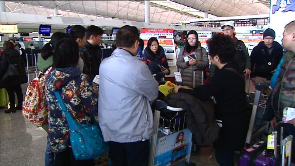 市民趁農曆新年假期外遊