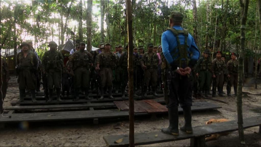 哥倫比亞革命武裝力量最初由貧農組成