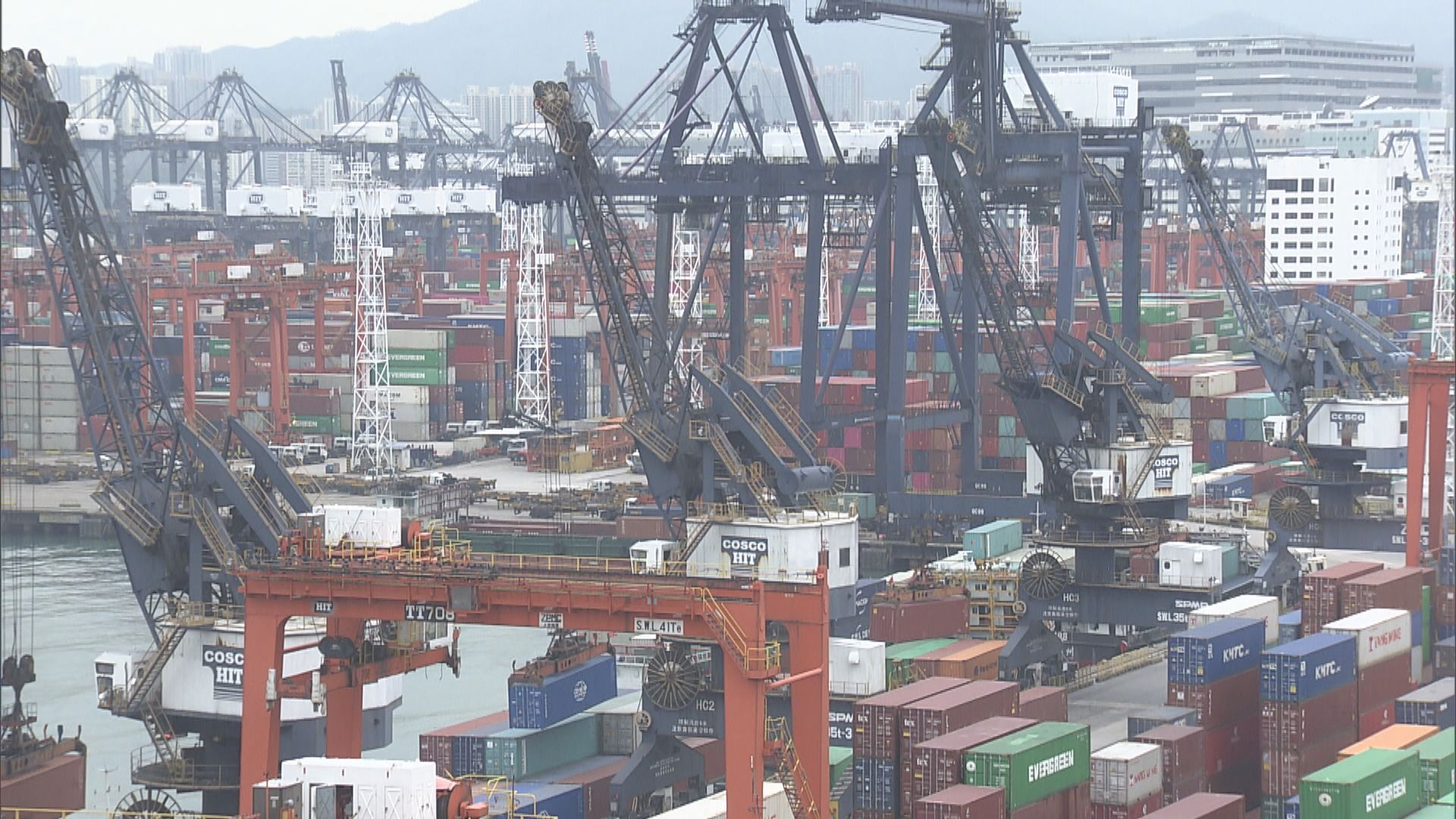 消委會海外搬運服務投訴升 需留意船期和存倉費