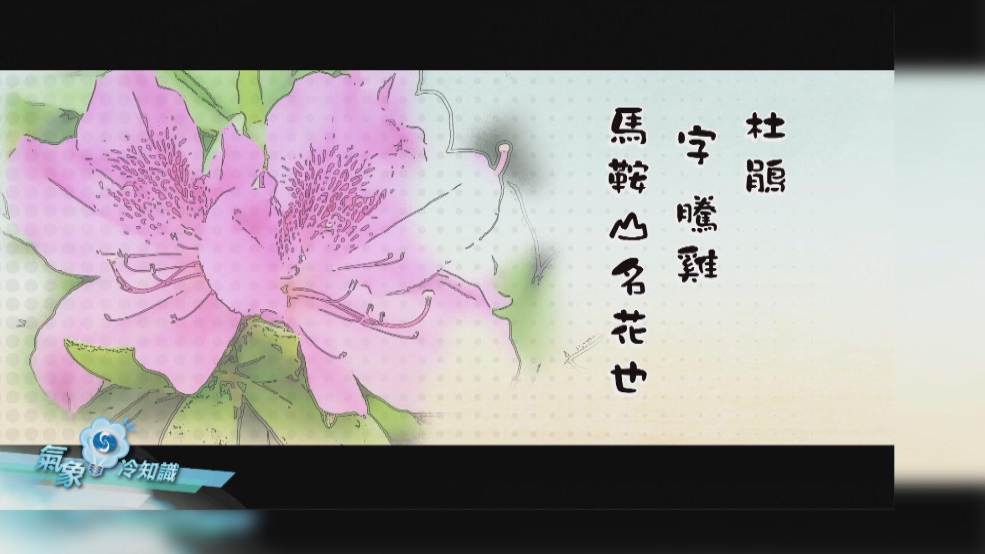 【氣象冷知識】冬暖花開