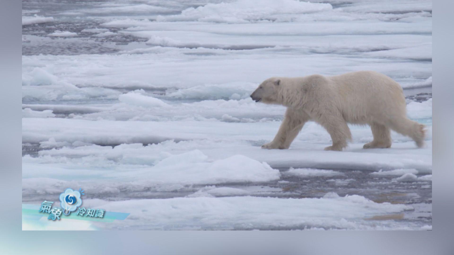 【氣象冷知識】北極地區