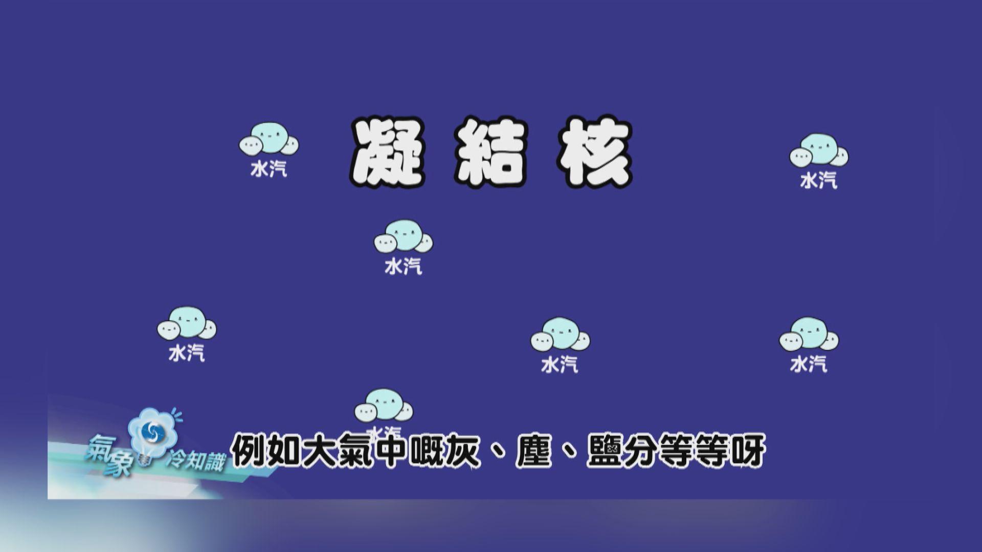 【氣象冷知識】菇菇可以求雨?