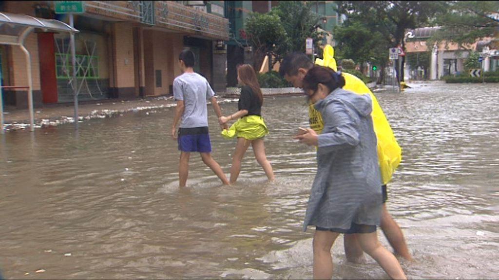 天文台指海水溫度升致本港颱風增多