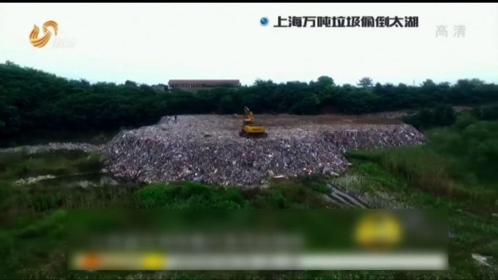 太湖垃圾山或污染大閘蟹