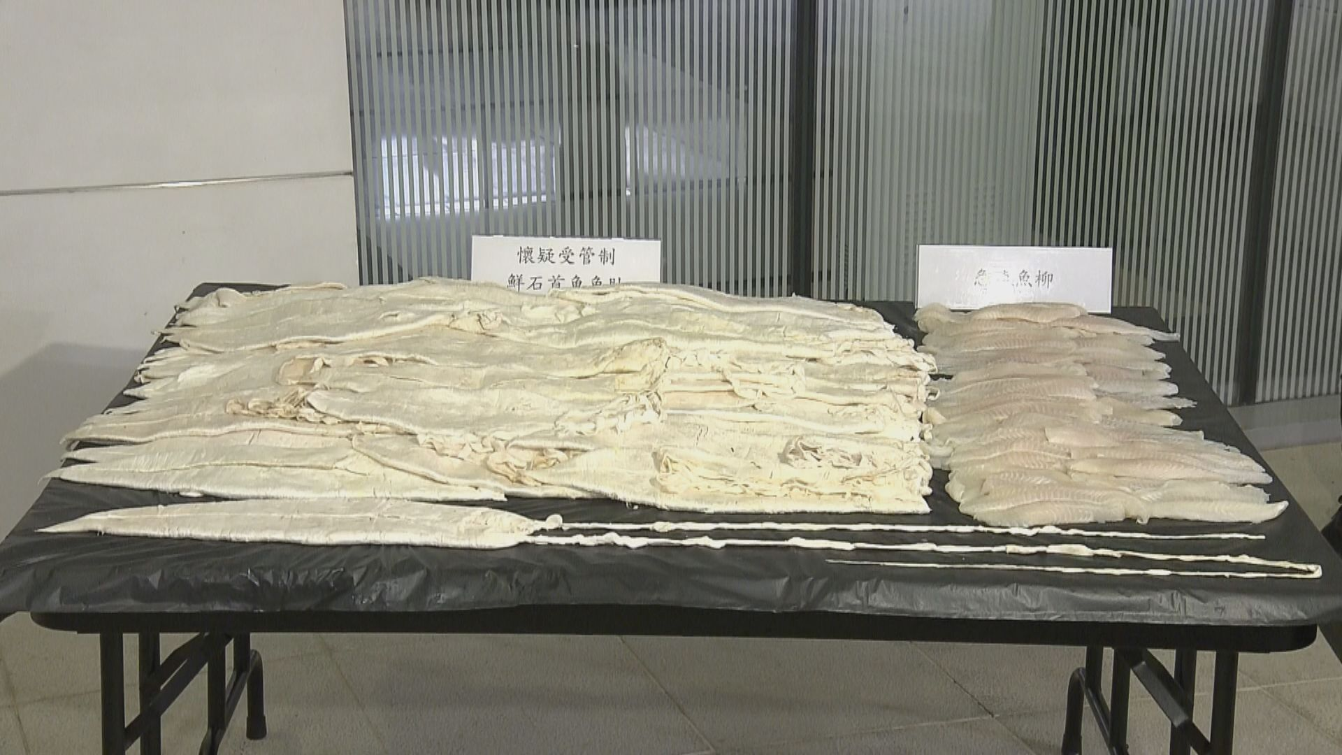 海關機場檢獲約46公斤石首魚魚肚約值740萬