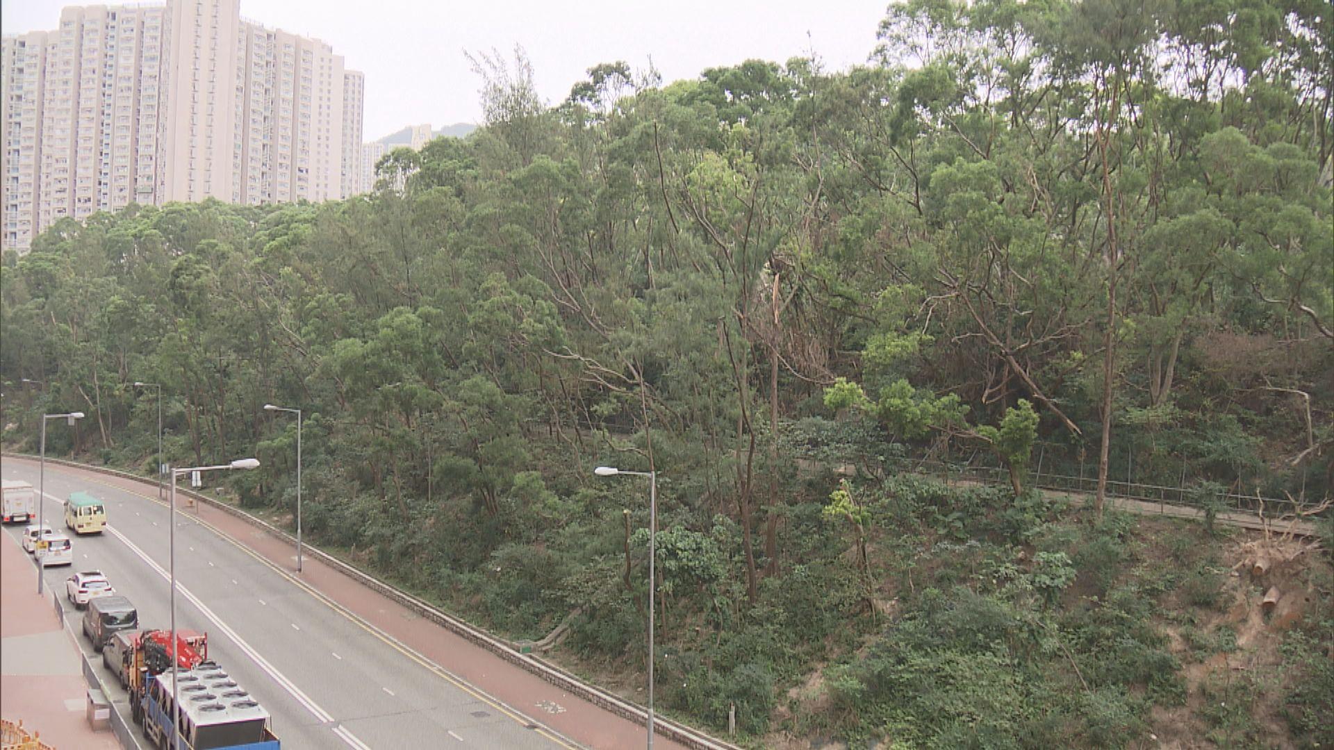 政府建議改劃鑽石山綠化地建資助出售房屋
