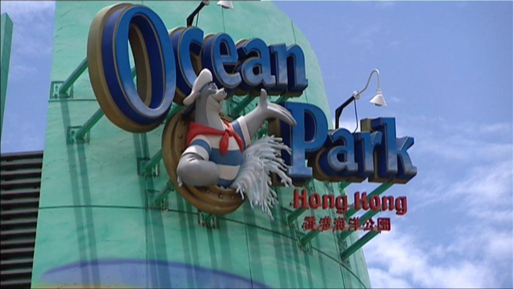 滬迪士尼周四開幕 海洋公園推新優惠迎戰