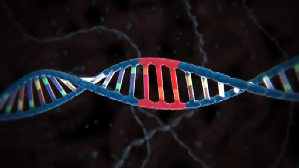 科學家首次修復胚胎遺傳病基因