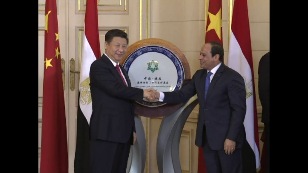 中埃簽署多份經貿合作協議