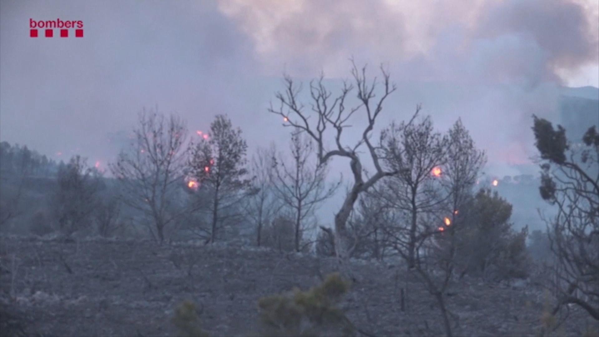 歐洲熱浪致西班牙山火