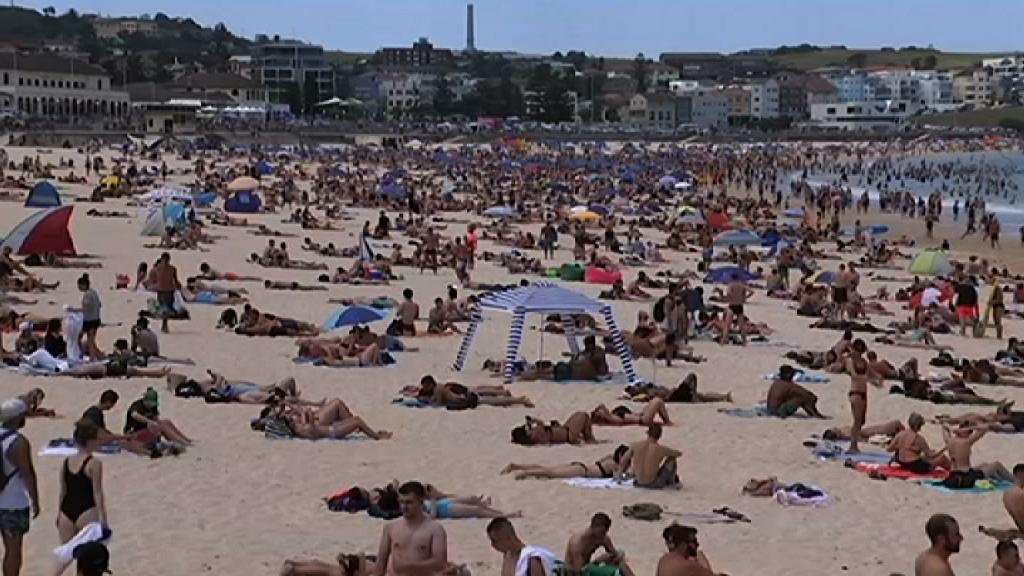 悉尼錄得近80年來最高溫