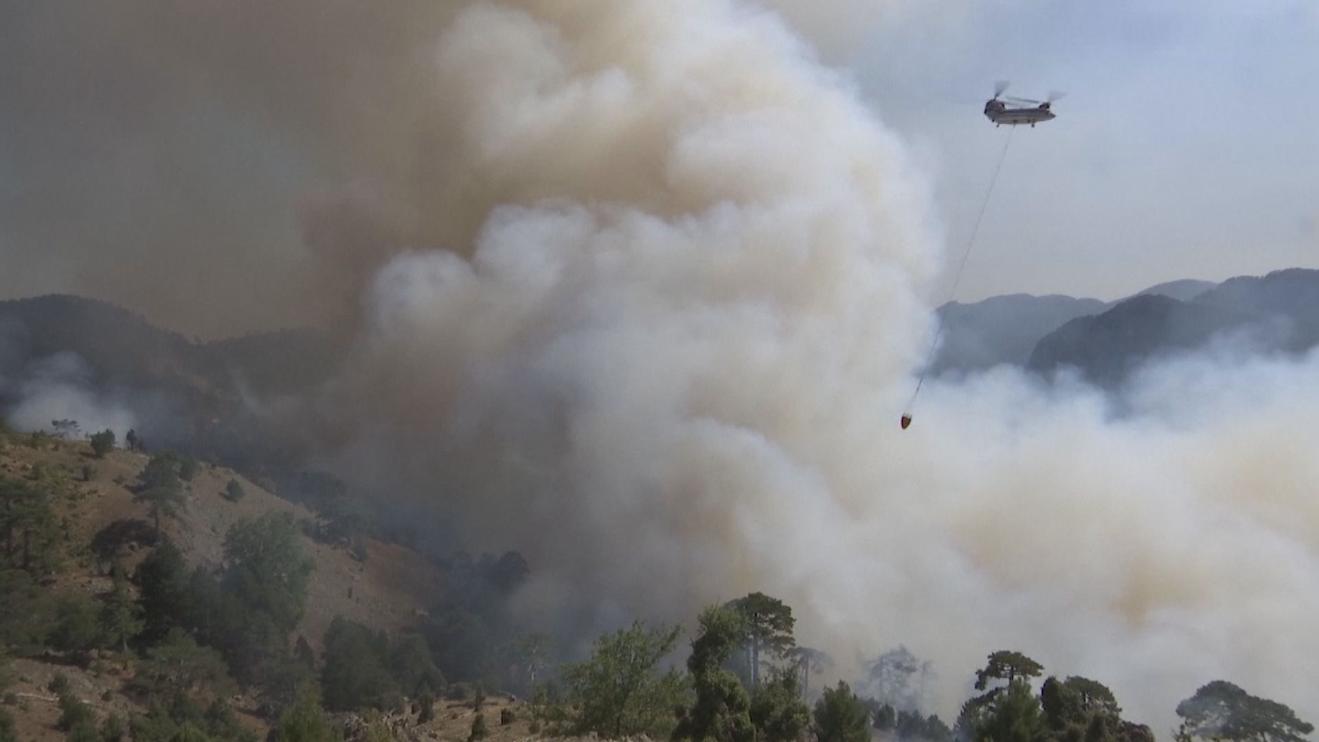 希臘埃維亞島山火焚燒一周尚未受控
