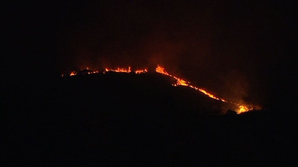 大嶼山欣澳發生山火無人傷