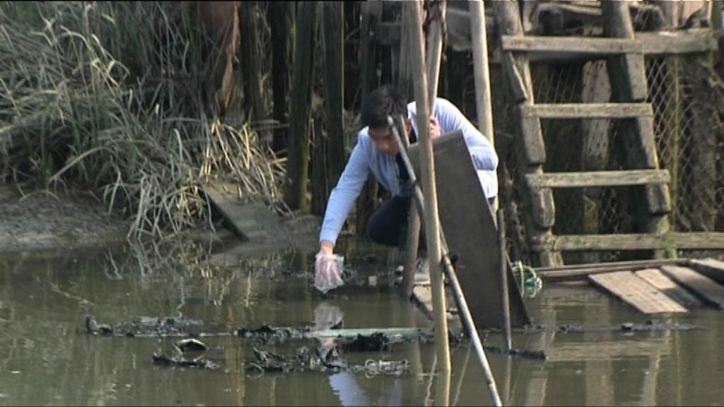南生圍火警 橫水渡負責人:經營七年未見過失火