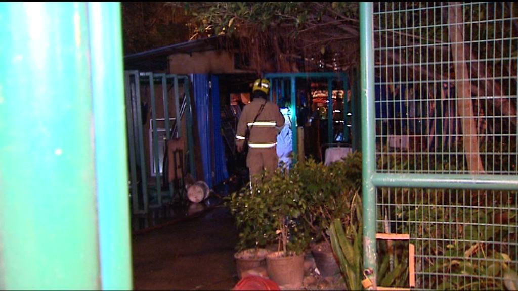 黃大仙下邨花圃遭縱火燒毀
