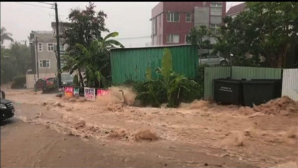 大埔村民促政府疏理渠道防止水浸