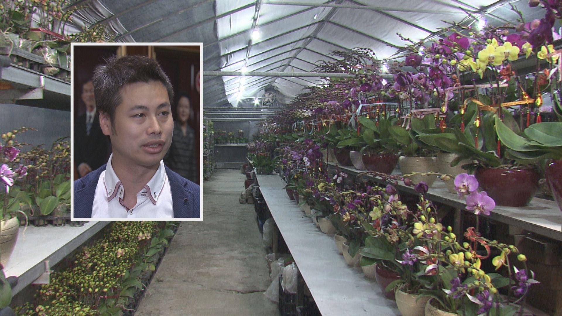何俊賢:花農冀重開花市 對縮短營業時間有爭議